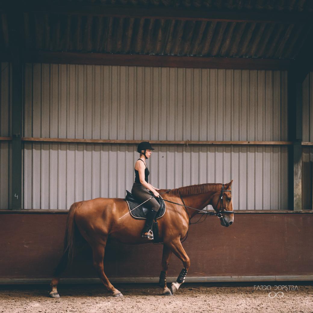 Op de foto met je paard