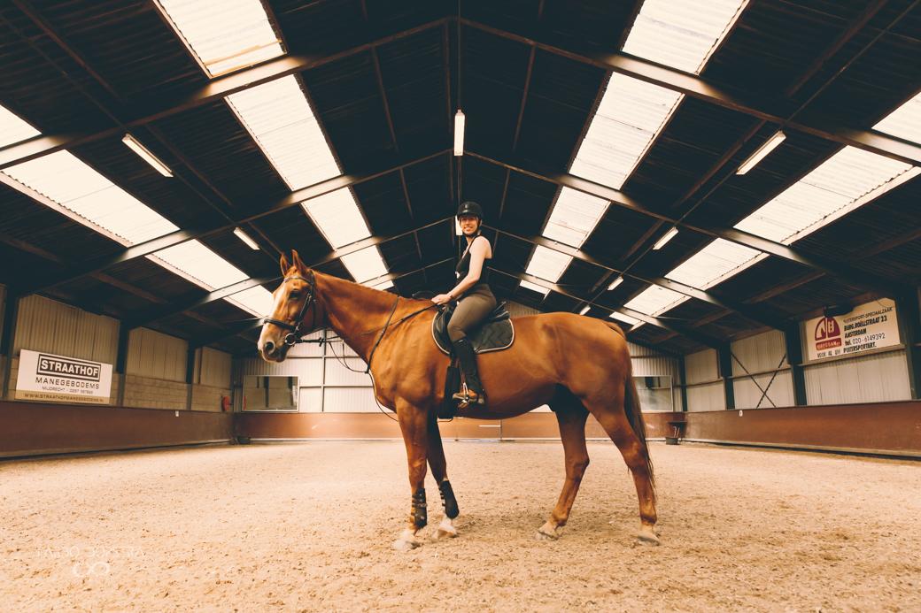 Fotoshoot Paard Groningen