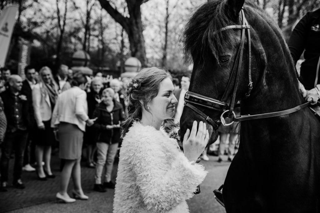 bruid beleeft emotioneel moment met haar Friese Paard bij de Bonifatiuskapel in DOkkum, op de achtergrond kijken de gasten toe