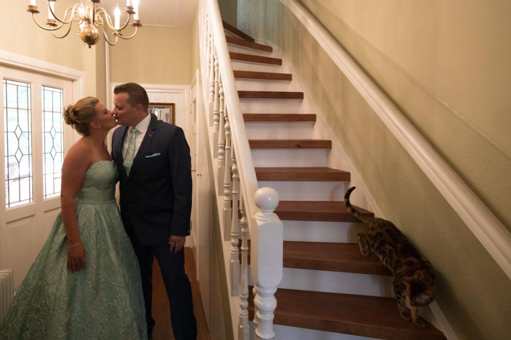 Kat op je bruiloft